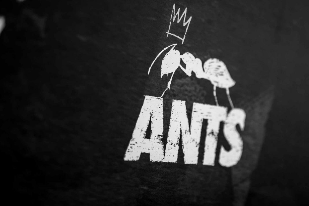 ANTS, la hormiga reina | Ibiza Nights: the Ibiza party guide